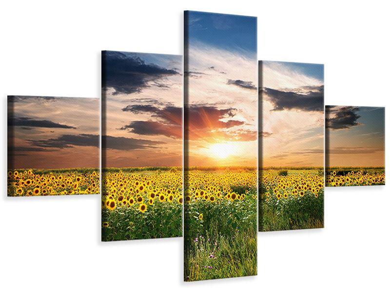 Leinwandbild 5-teilig Ein Feld von Sonnenblumen