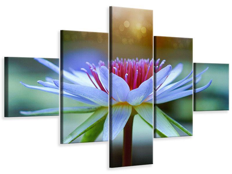 Leinwandbild 5-teilig Pretty Lotus