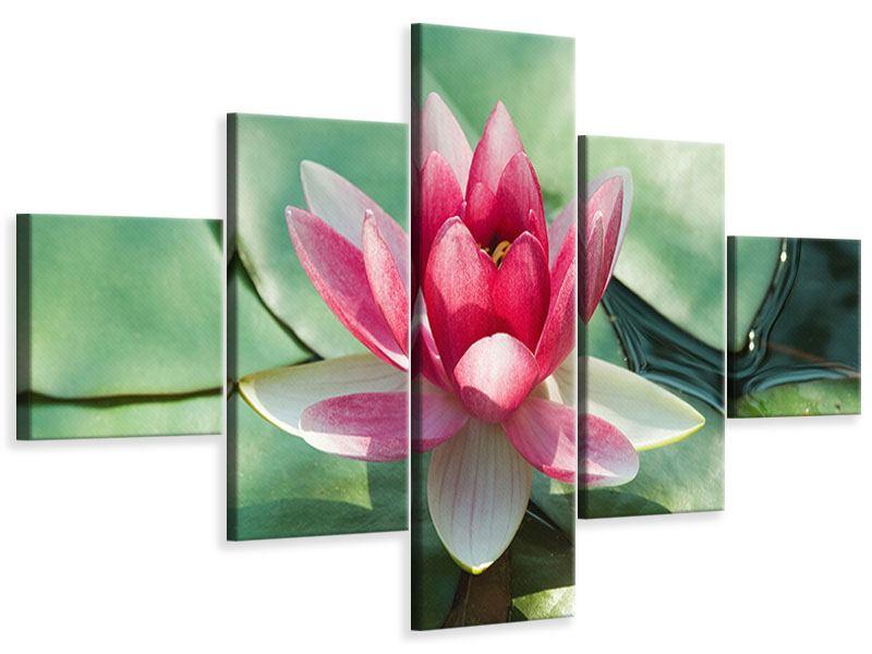 Leinwandbild 5-teilig Der Frosch und das Lotusblatt