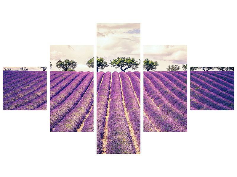 Leinwandbild 5-teilig Das Lavendelfeld