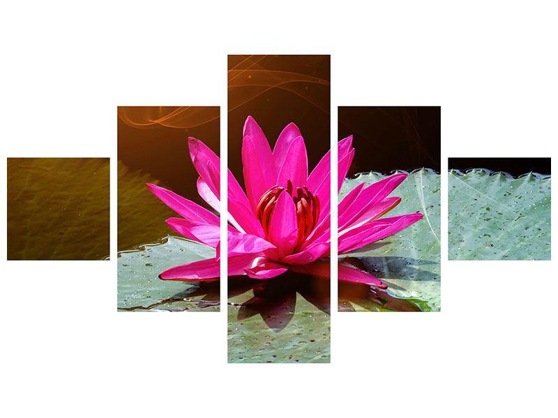 Leinwandbild 5-teilig Der Frosch und das Seerosenblatt