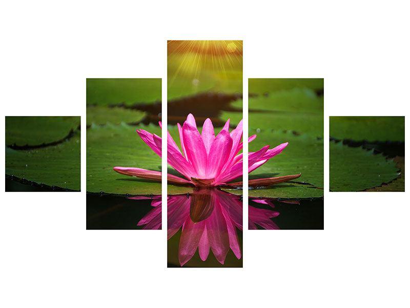 Leinwandbild 5-teilig Lilienspiegelung