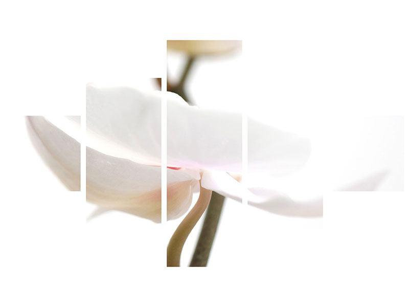 Leinwandbild 5-teilig XXL Orchideenblüte