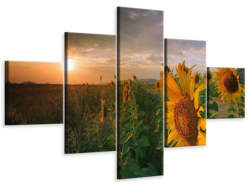Leinwandbild 5-teilig Sonnenblumen im Lichtspiel