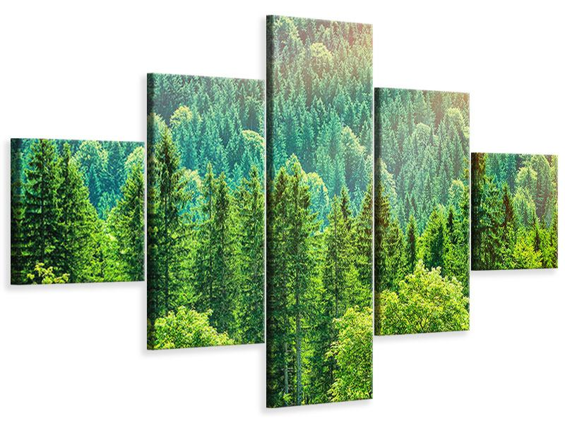 Leinwandbild 5-teilig Der Waldhügel