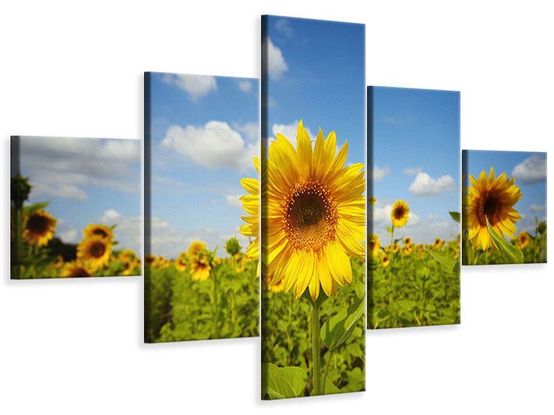 Leinwandbild 5-teilig Sommer-Sonnenblumen