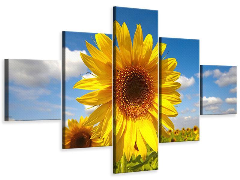 Leinwandbild 5-teilig Das Feld der Sonnenblumen