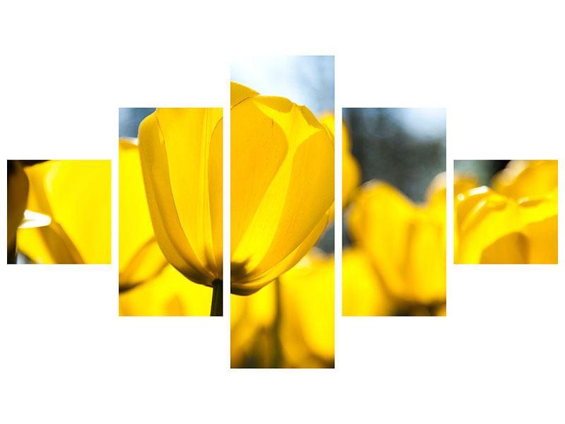 Leinwandbild 5-teilig Gelbe Tulpen in XXL
