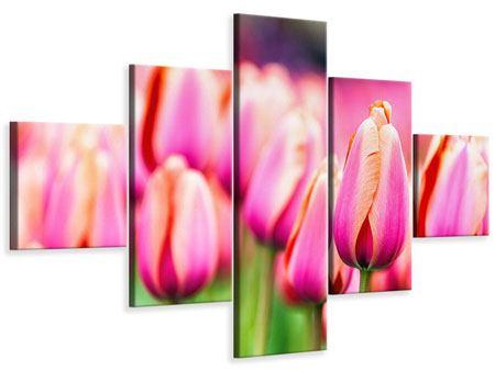 Leinwandbild 5-teilig Pretty in Pink