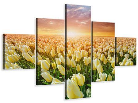 Leinwandbild 5-teilig Sonnenaufgang bei den Tulpen
