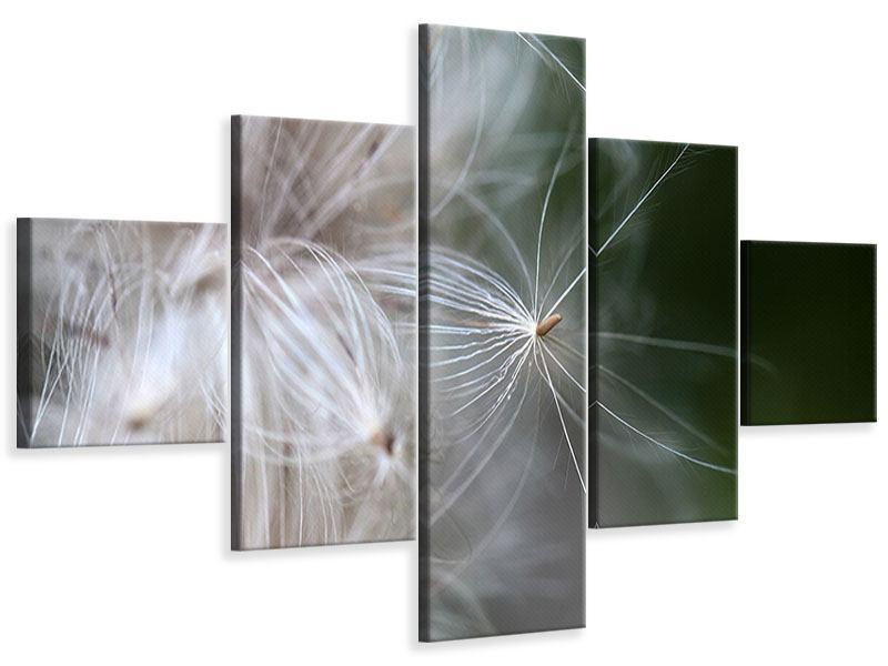 Leinwandbild 5-teilig Close up Blütenfasern