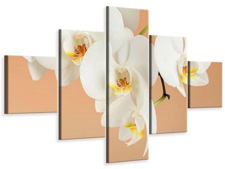 Leinwandbild 5-teilig Weisse Orchideenblüten
