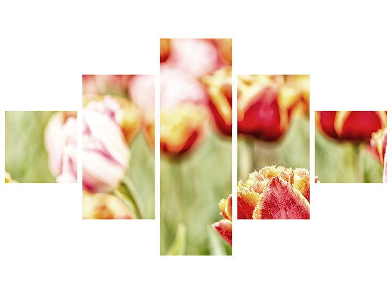 Leinwandbild 5-teilig Die Schönheit der Tulpe