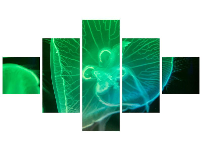 Leinwandbild 5-teilig Quallen im Licht