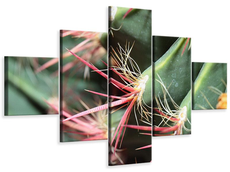 Leinwandbild 5-teilig Die Kaktusblüte