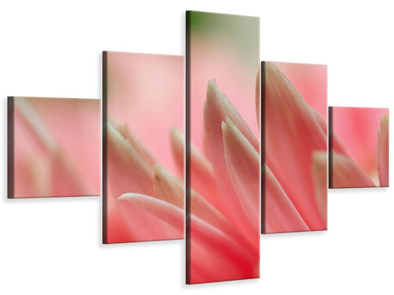 Leinwandbild 5-teilig Close Up einer Blüte