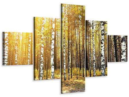 Leinwandbild 5-teilig Birkenwald