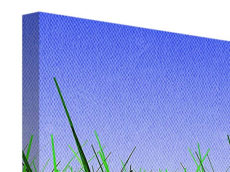 Leinwandbild 5-teilig Im Gras
