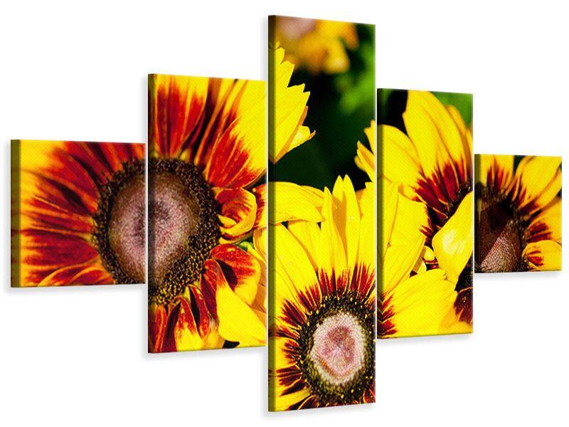 Leinwandbild 5-teilig Reife Sonnenblumen