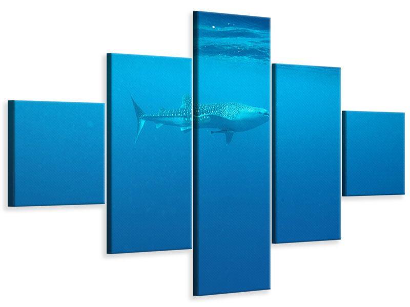 Leinwandbild 5-teilig Der Walhai