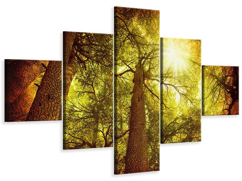 Leinwandbild 5-teilig Cedar Baum