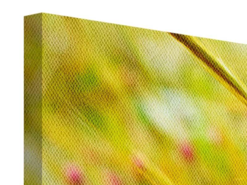 Leinwandbild 5-teilig Das Weizenfeld