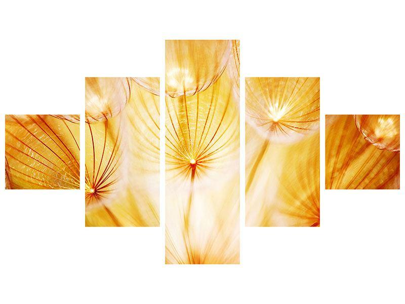 Leinwandbild 5-teilig Close Up Pusteblume im Licht