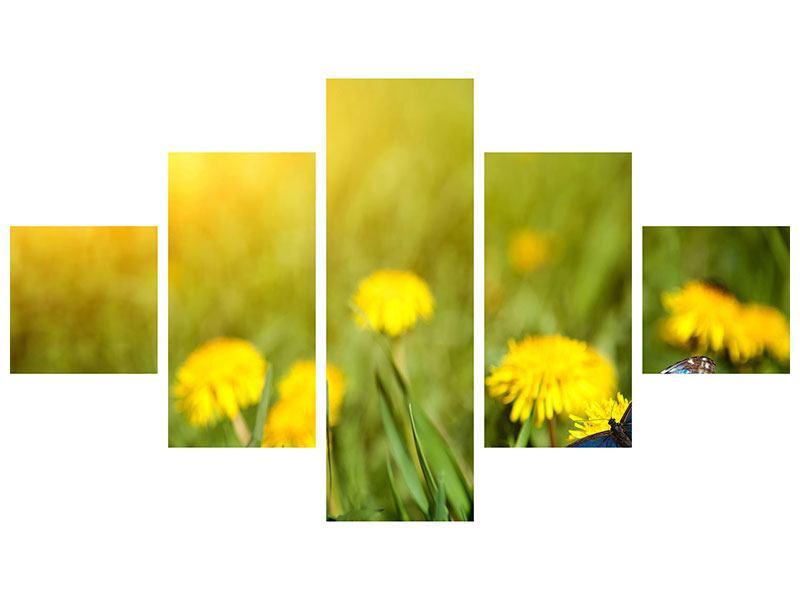 Leinwandbild 5-teilig Der Löwenzahn und der Schmetterling