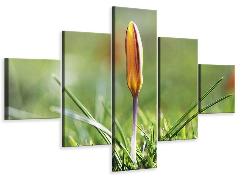 Leinwandbild 5-teilig Die Blütenknospe