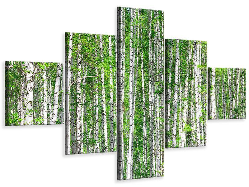 Leinwandbild 5-teilig Der Birkenwald