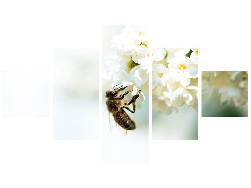 Leinwandbild 5-teilig Die Hummel und die Blüte