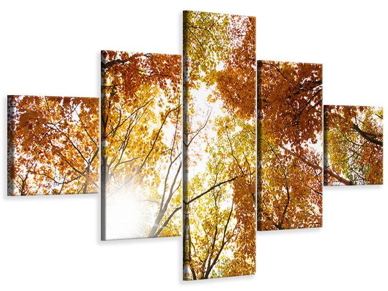Leinwandbild 5-teilig Herbstbäume