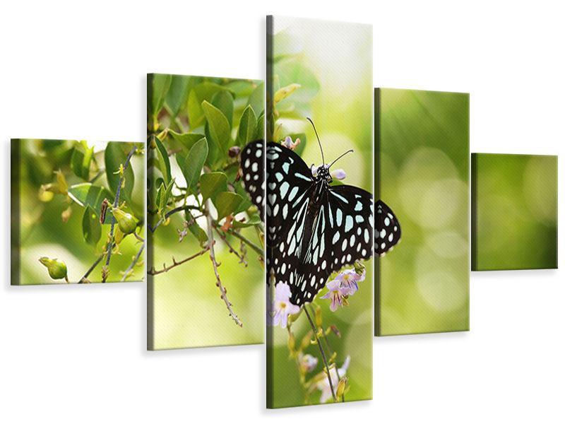 Leinwandbild 5-teilig Papilio Schmetterling XXL