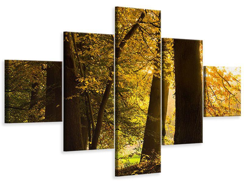 Leinwandbild 5-teilig Herbstlaub