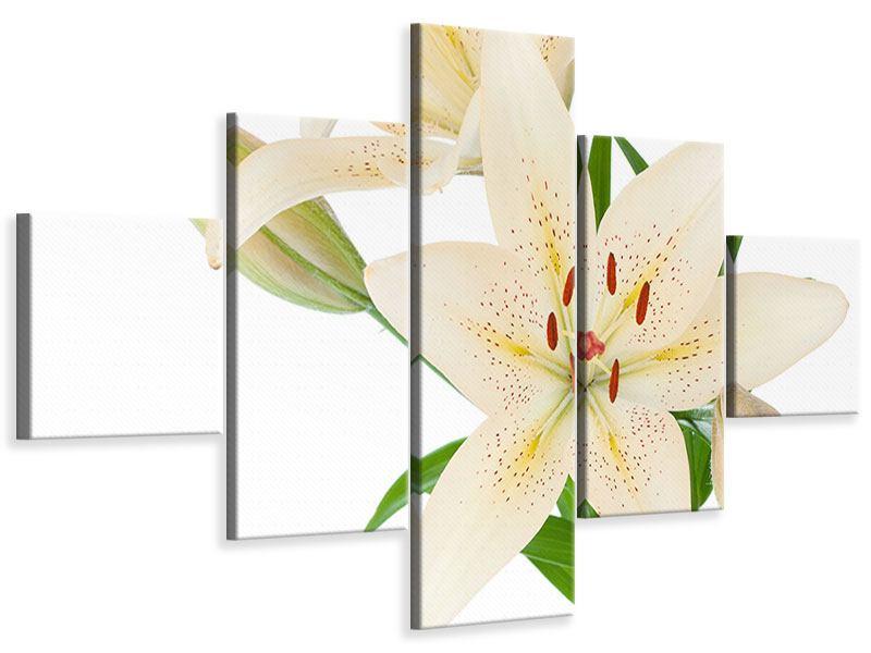 Leinwandbild 5-teilig Weisser Lilienstrauch
