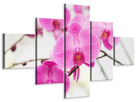 Leinwandbild 5-teilig Das Symbol der Orchidee