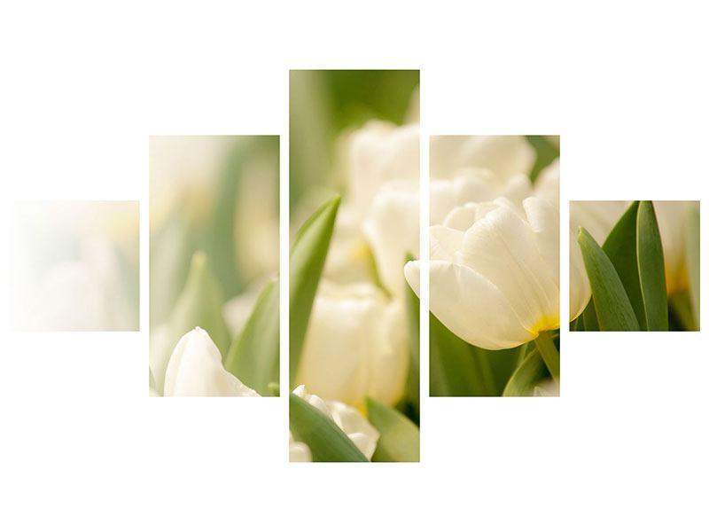 Leinwandbild 5-teilig Tulpenperspektive