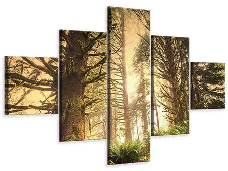 Leinwandbild 5-teilig Sonnenuntergang im Dschungel
