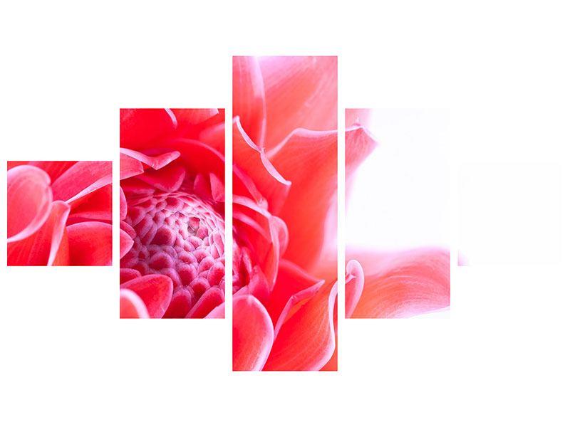 Leinwandbild 5-teilig Etlingera XXL
