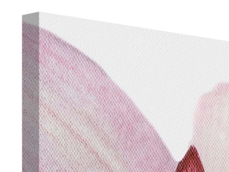 Leinwandbild 5-teilig Orchideenblüte XXL