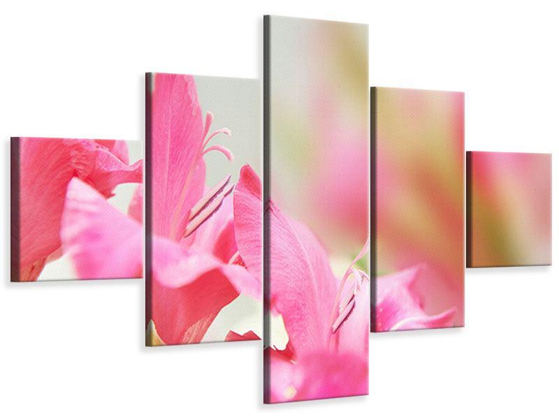 Leinwandbild 5-teilig Gladiolen
