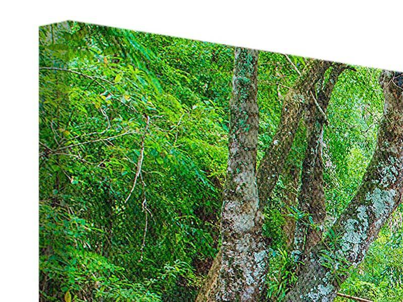 Leinwandbild 5-teilig Wasserspektakel