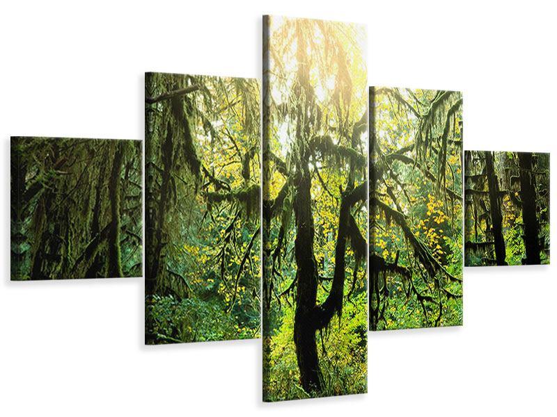 Leinwandbild 5-teilig Verträumter Wald