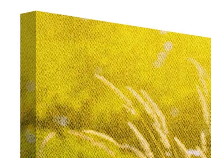 Leinwandbild 5-teilig Sommerliche Blumenwiese