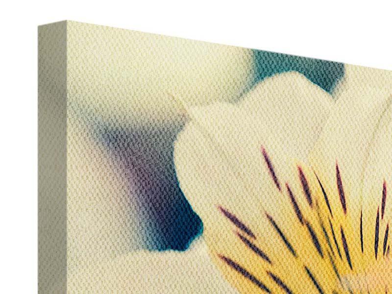Leinwandbild 5-teilig Tigerlilien