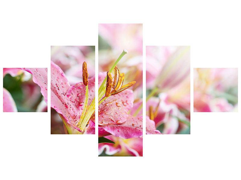 Leinwandbild 5-teilig Lilien im Tau