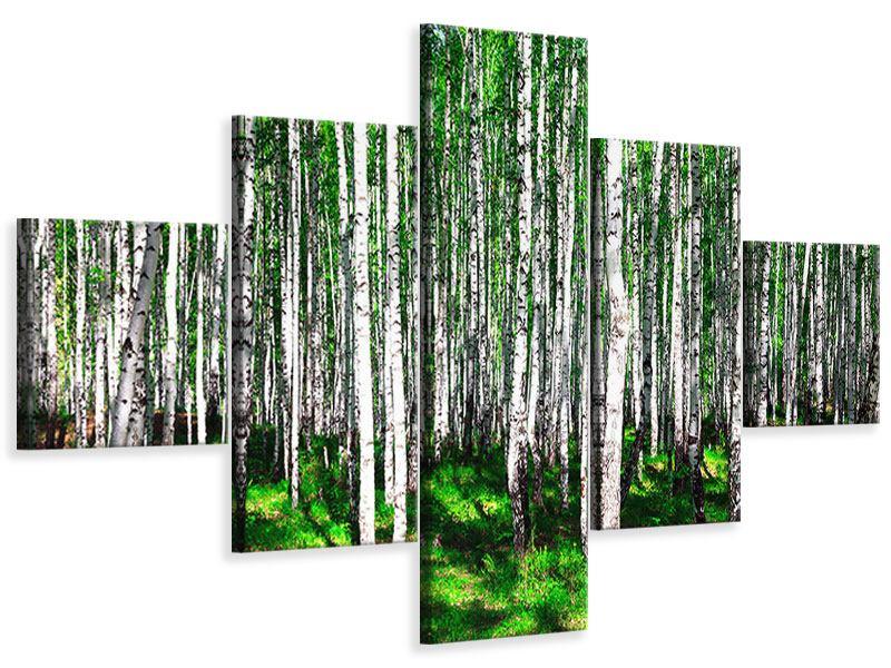 Leinwandbild 5-teilig Sommerlicher Birkenwald