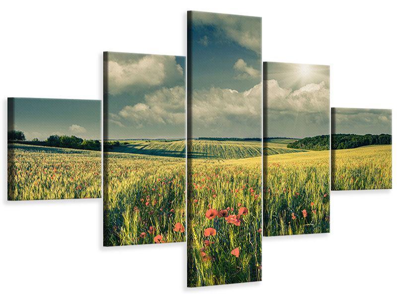 Leinwandbild 5-teilig Der Mohn im Weizenfeld