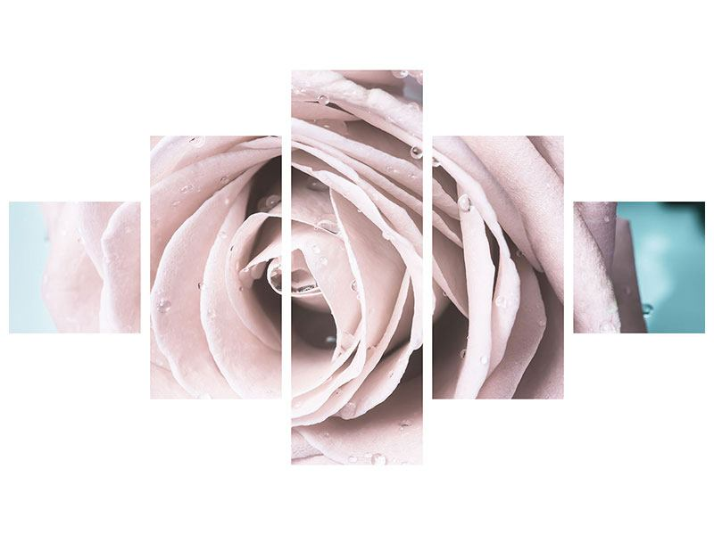 Leinwandbild 5-teilig Pastellrose