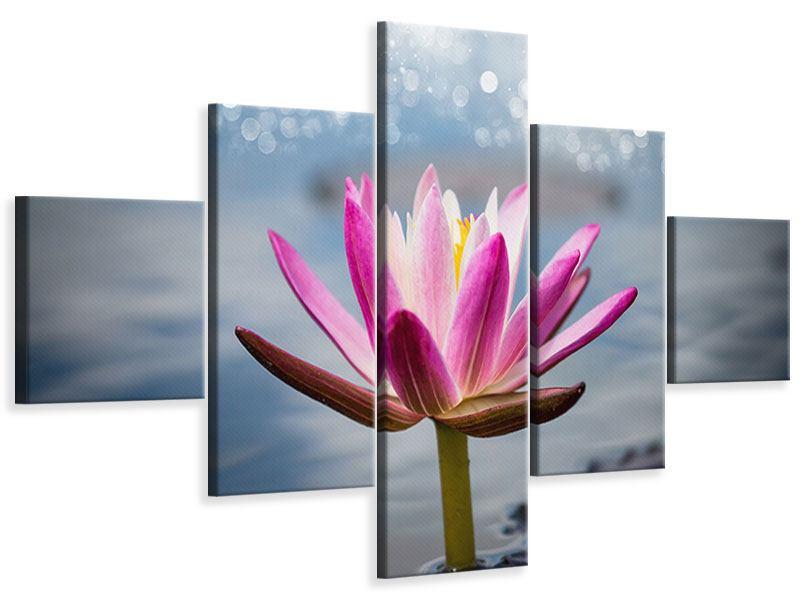 Leinwandbild 5-teilig Lotus im Morgentau